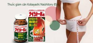giam can kobayashi naishitoru 85