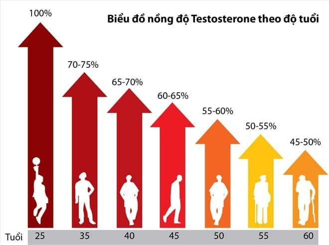 Testosterone-la-gi-0