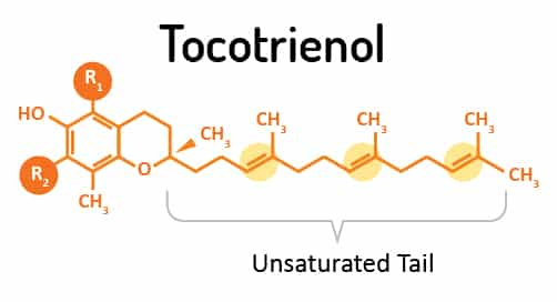 Tocotriennol-la-gi-0