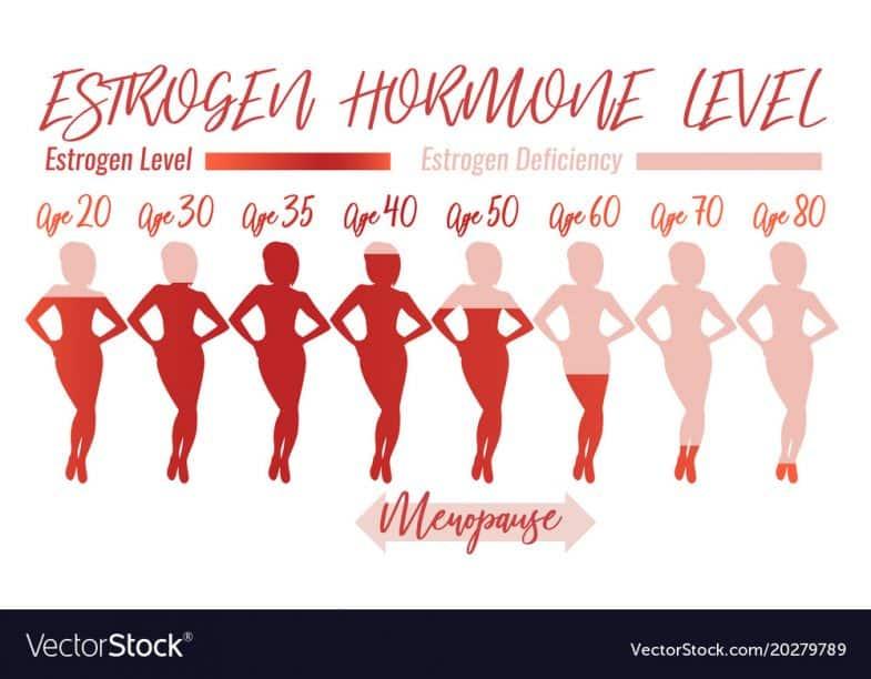 Estrogen Hormone là gì