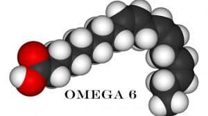 omega-6-la-gi-0