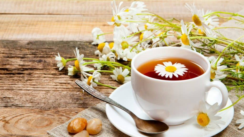 Uống trà hoa cúc có tác dụng gì, nhiều có tốt không?